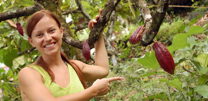 kakaovnik-kostarika