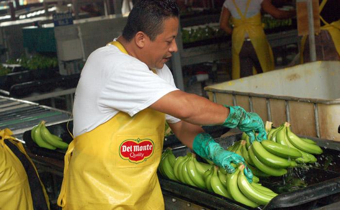 poukladame_banany_a_posunieme_dalej